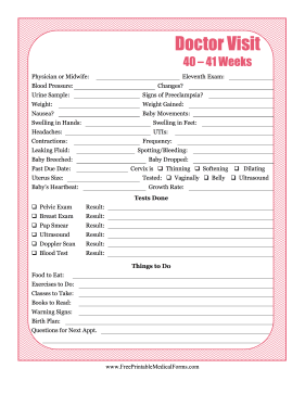 Pregnancy Journal 11 Medical Form